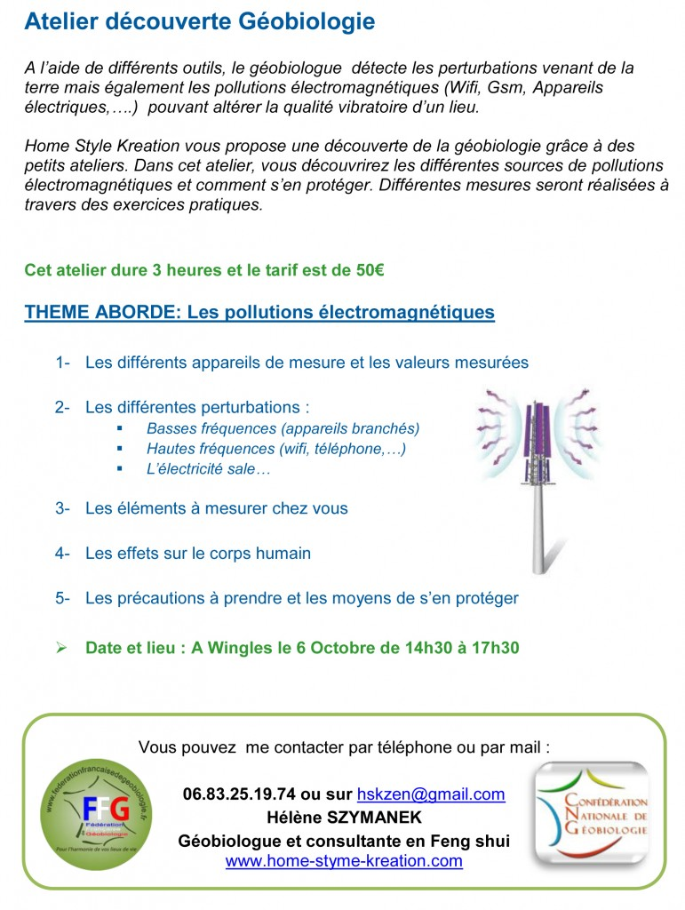 Atelier Pollutions Electromagnétiques
